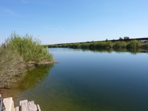 All American Canal near Calexico, CA